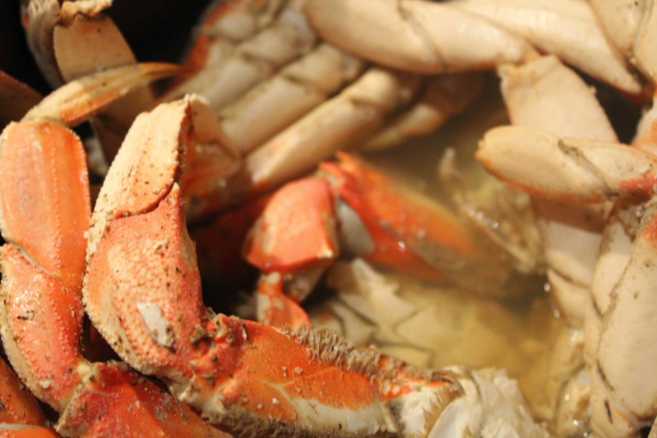 Don't be scared of cooking crab